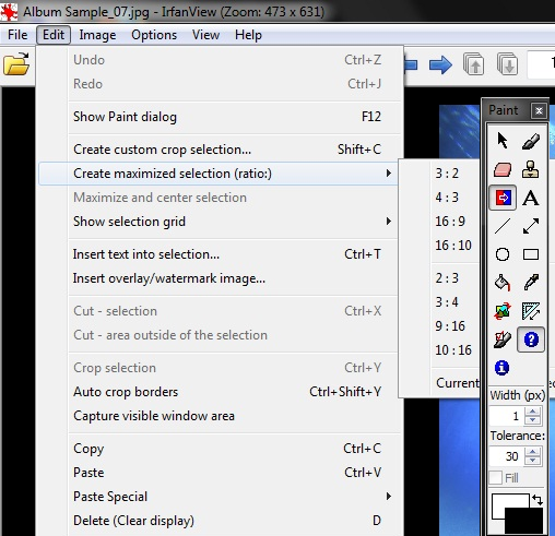 IrfanView 4 33 Free Image Viewer Review for Windows 7